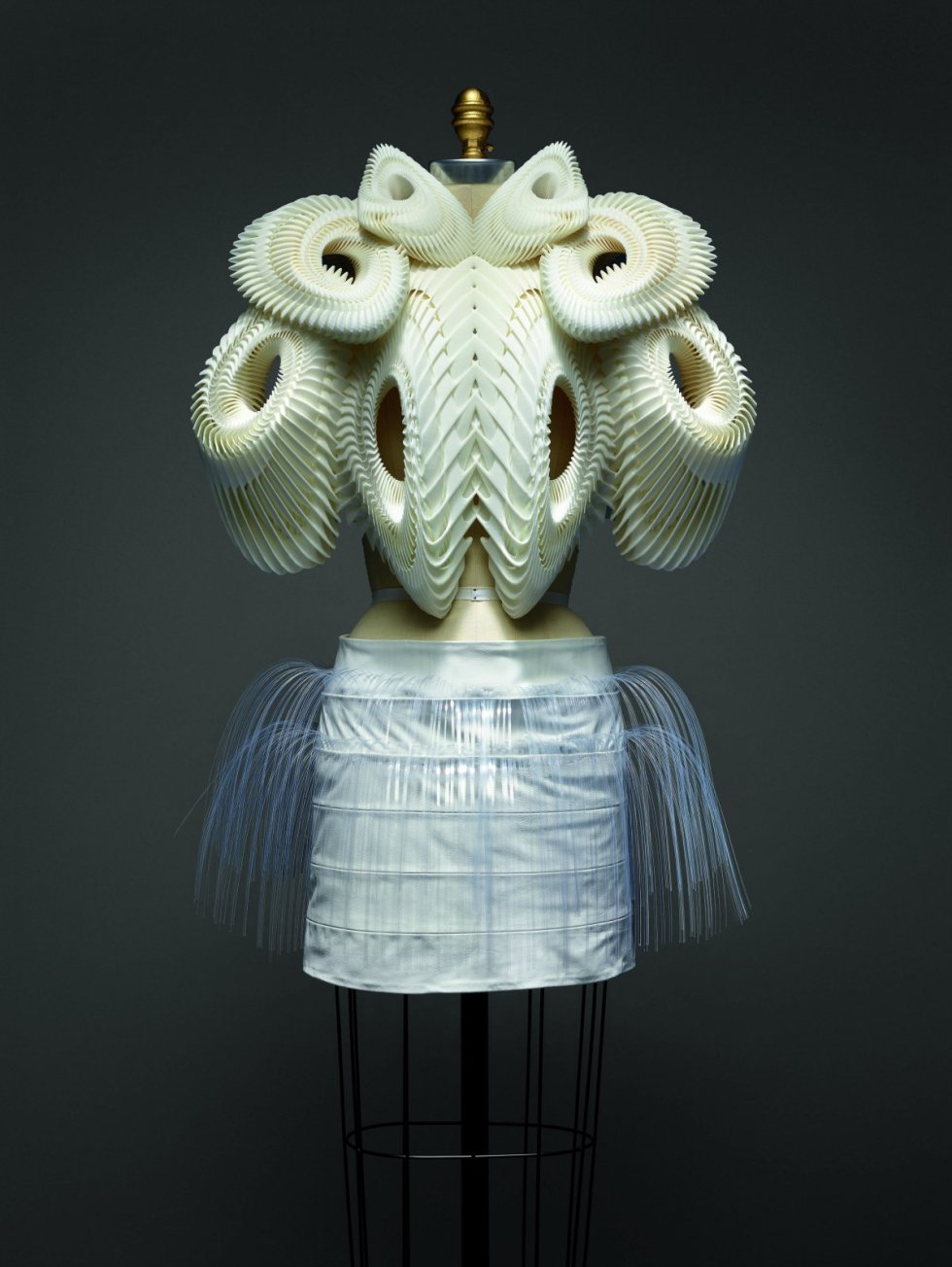 called-ensemble-this-futuristic-dress-also-by-van-herpen-is-part-of-her-wearable-3d-printed-2010-haute-couture-line