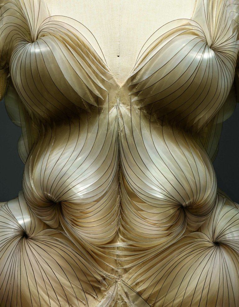 this-dress-by-van-herpen-was-3d-printed-based-on-pictures-taken-by-science-photographer-steve-gschmeissner-the-photographer-used-scanning-electron-microscope-sem-technology-to-zoom-in-on-microorganisms